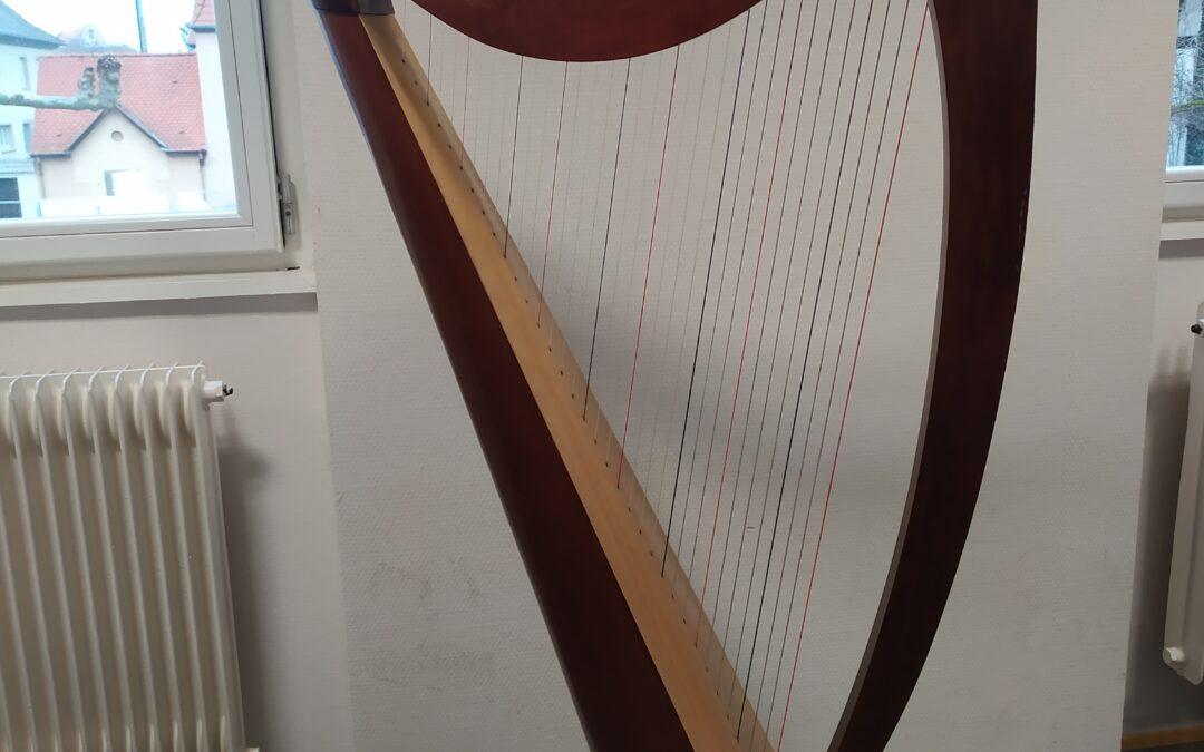 Classe de harpe : Chat chinois
